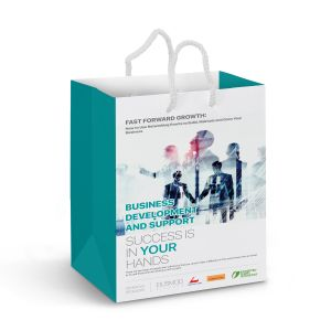 Medium Laminated Paper Carry Bag b Full Colour